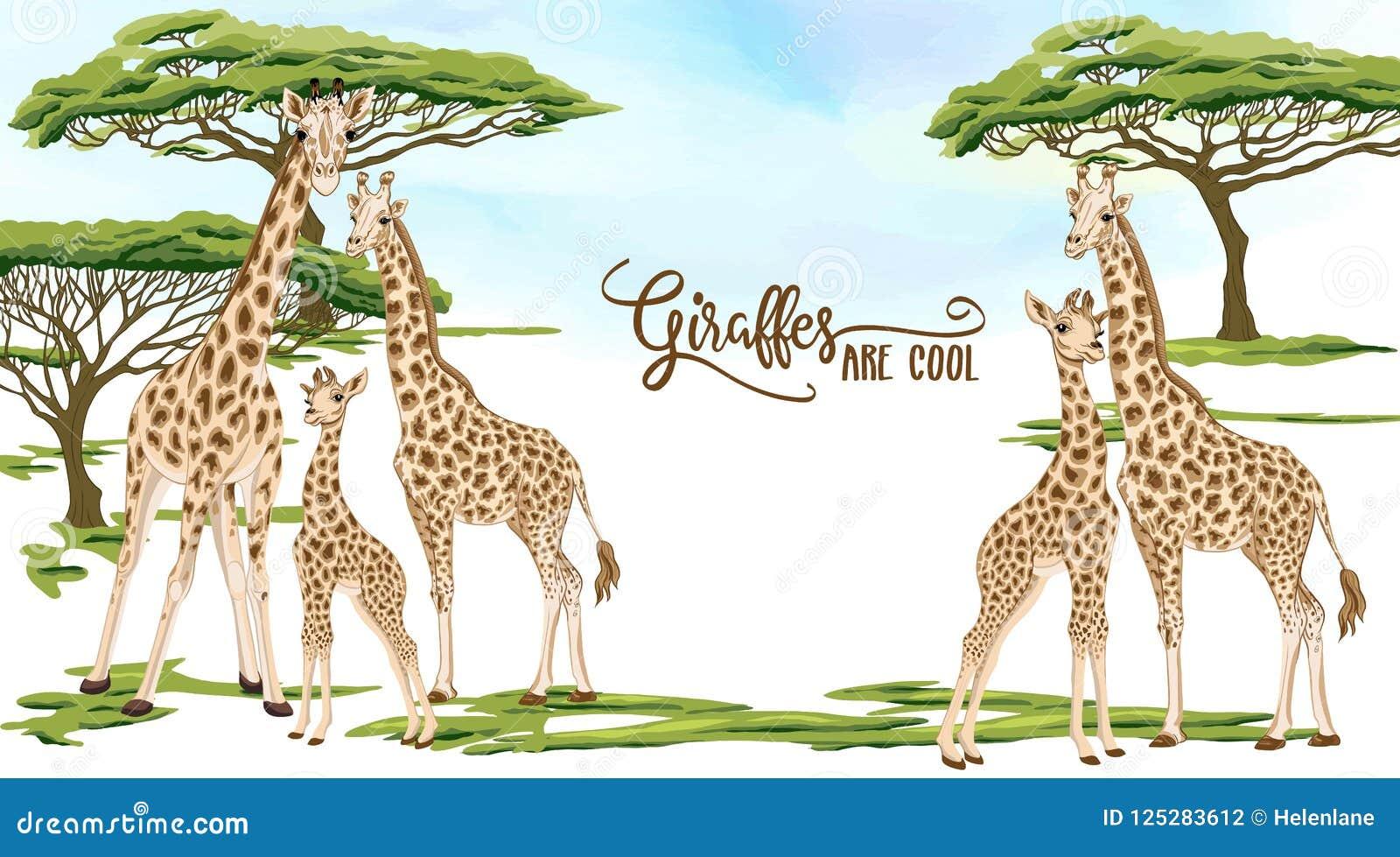 Background With Giraffe Family. Vector Illustration. Stock Vector ...