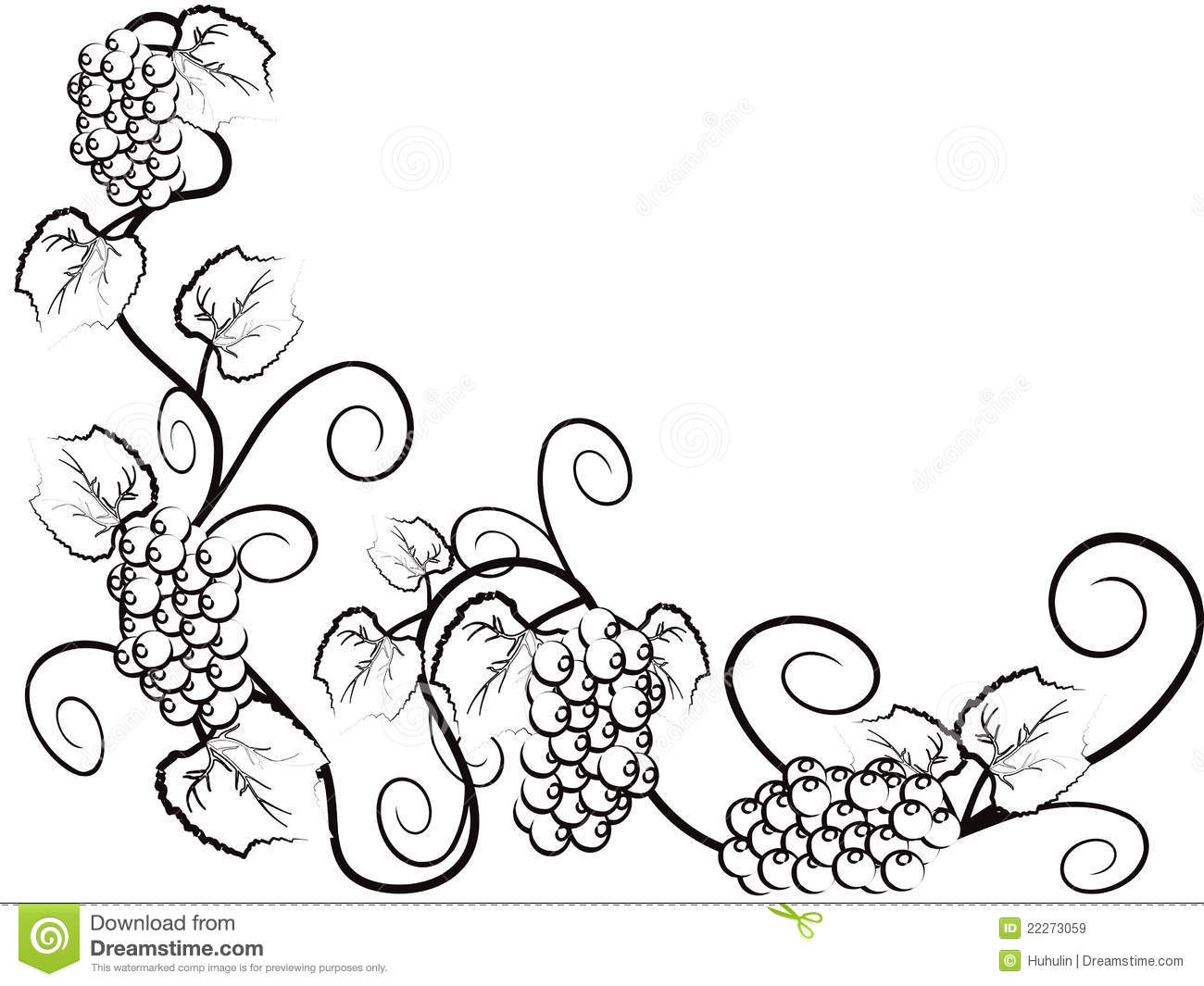 The Background Of Grape Vine Stock Vector - Illustration of fruit ... for Drawing Grape Vines  584dqh
