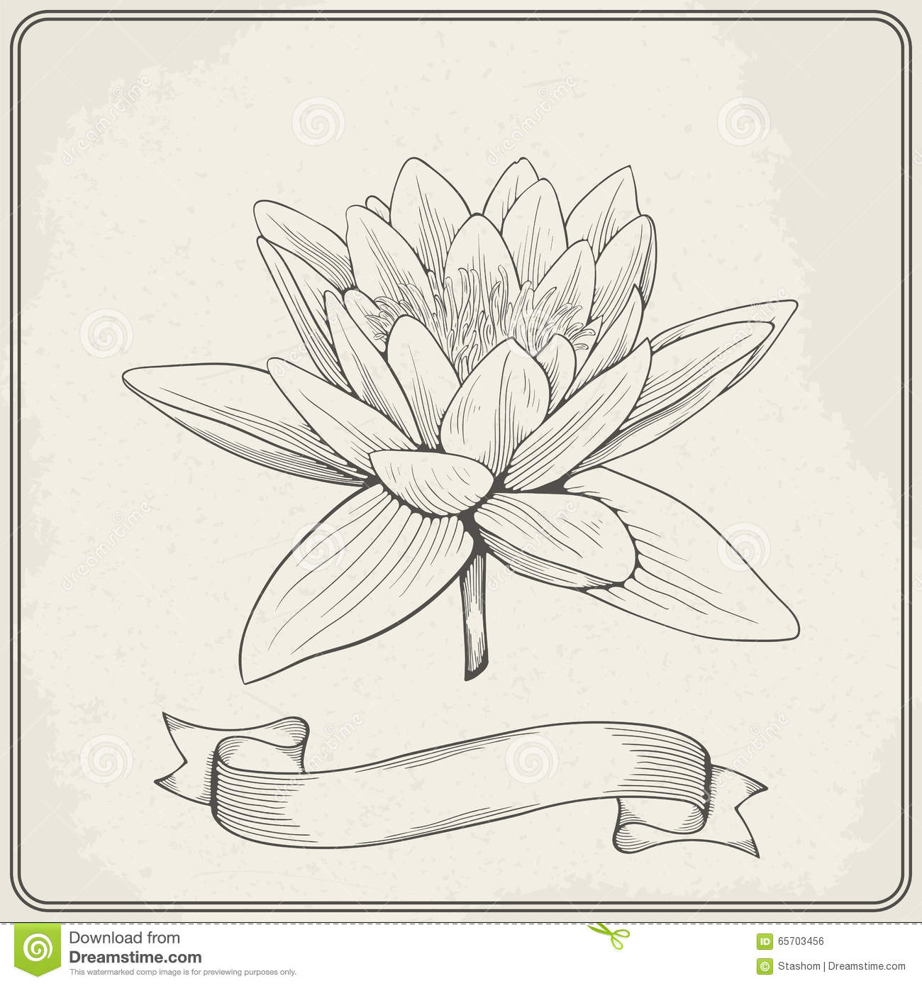 Background With Hand Drawn Sketch Beautiful Water Lily