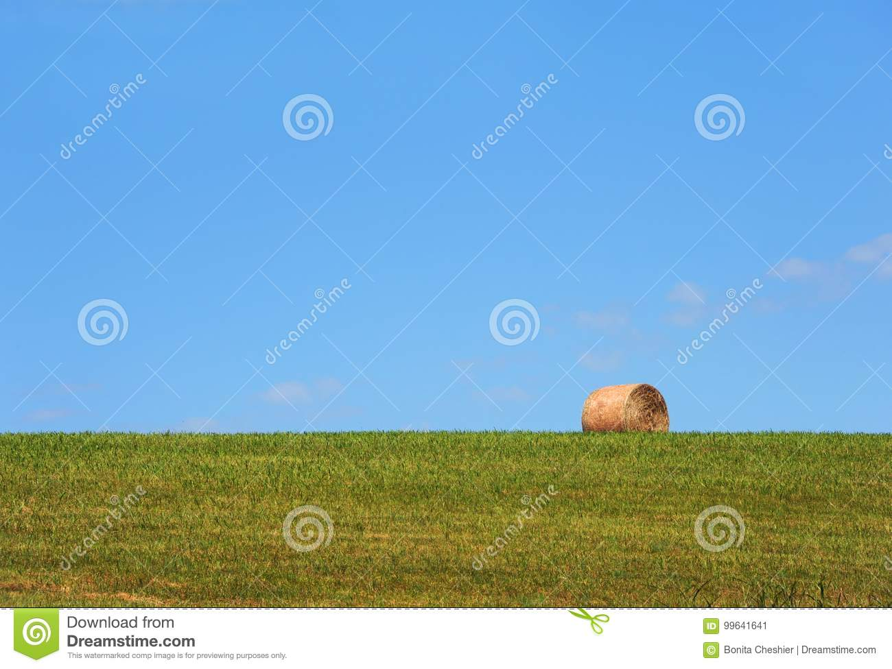Background Hay Roll Stock Image Image Of Single Roll
