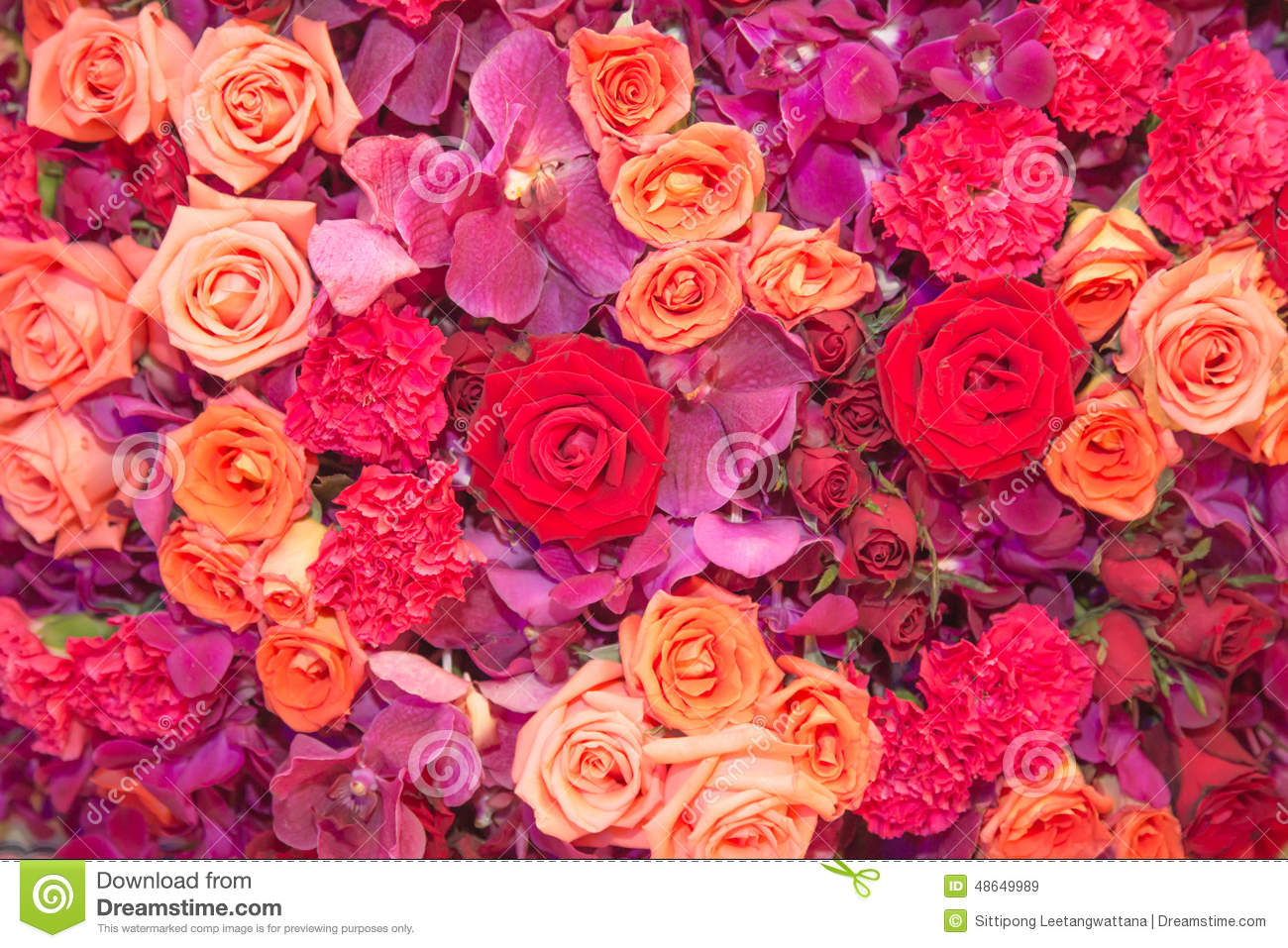 Background Of Multi Colour Flowers Stock Image
