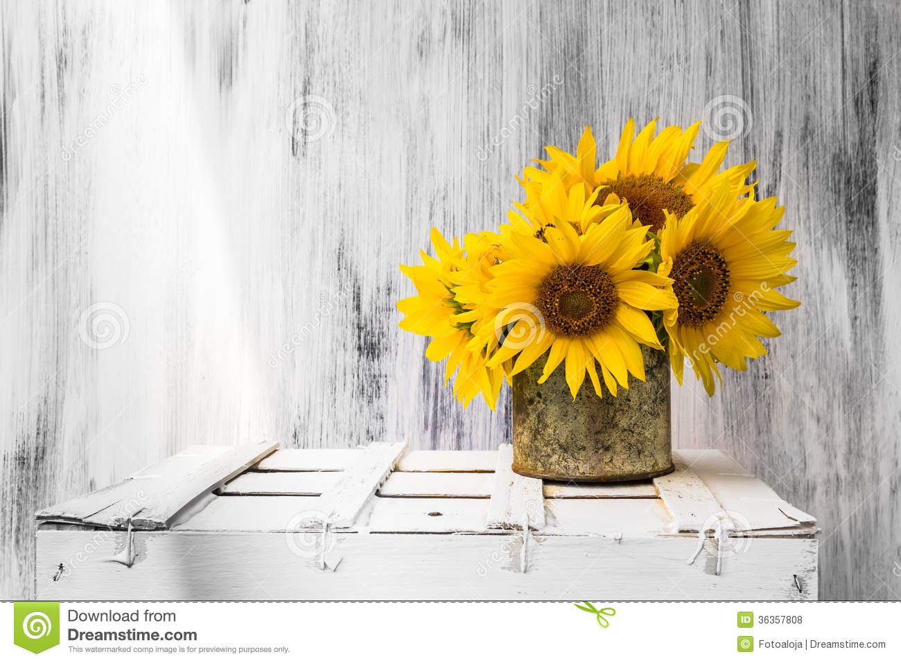 Background Still Life Flower Sunflower Wooden White Vintage Stock Photo 36357808