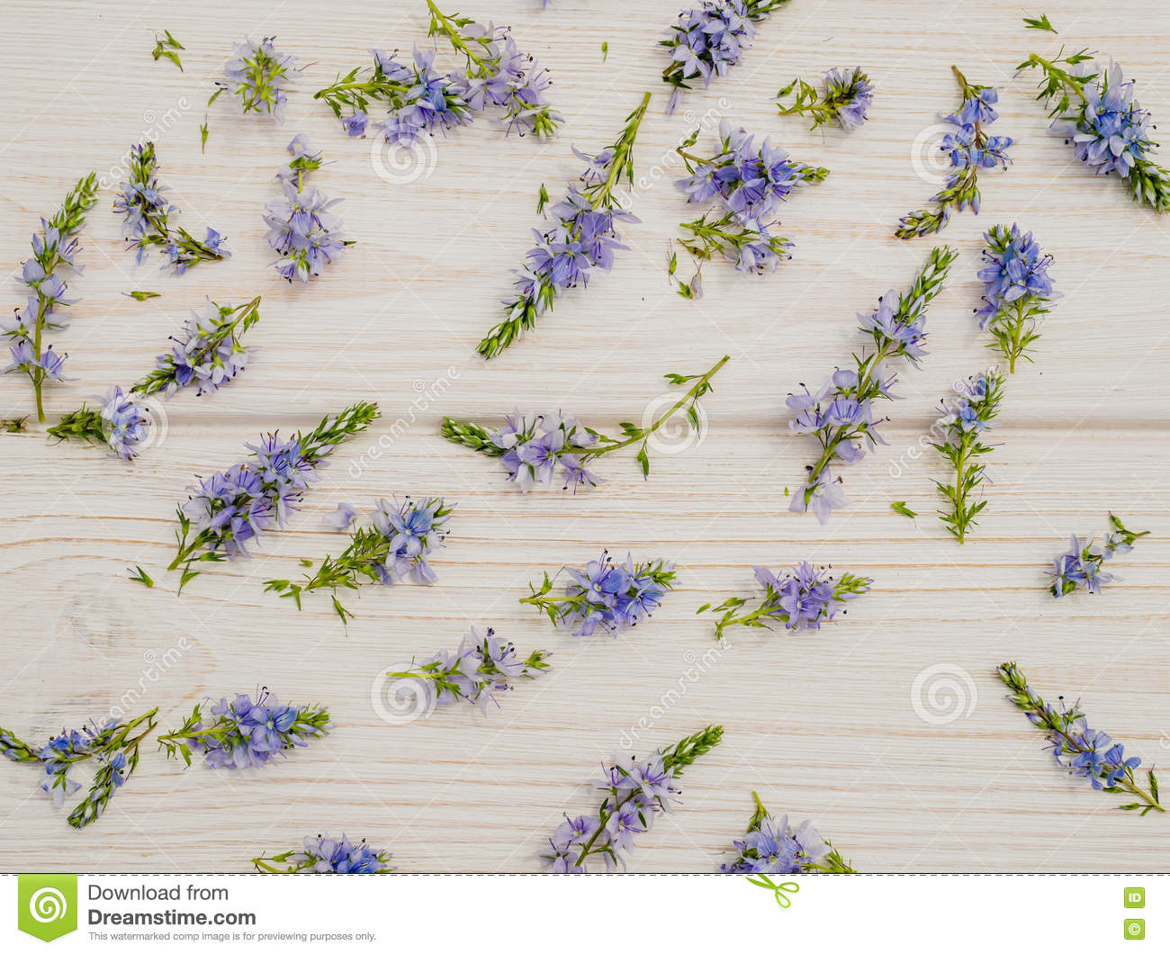 Background in the style of Provence. Delicate blue cornflowers and white wood