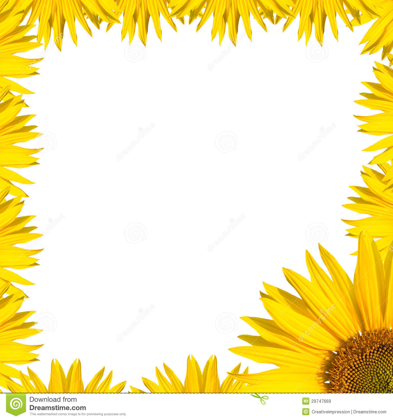 clip art borders sunflowers - photo #43