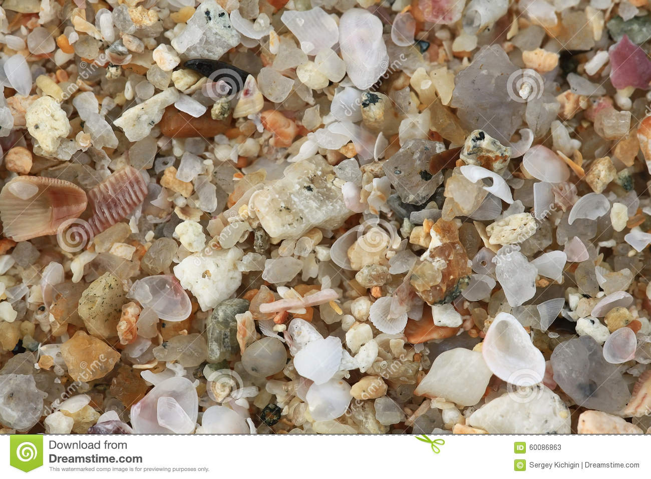 Background texture with pebble and sea shells