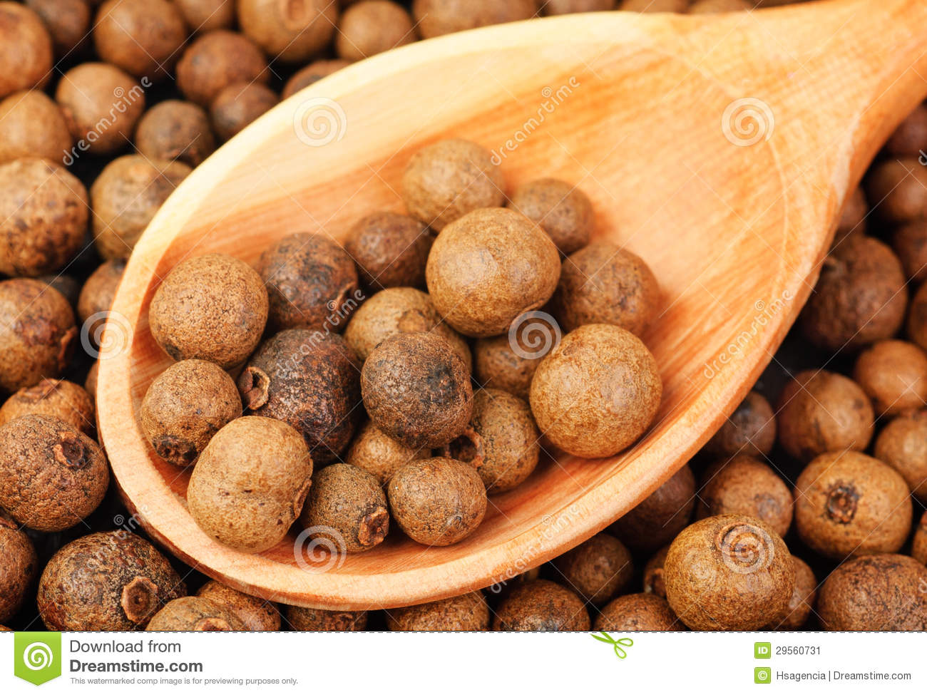 Background texture of whole allspice(jamaica pepper) with wooden spoon Used as a spice in cuisines all over the world. Also used