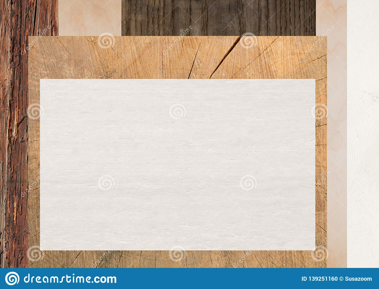Background with various wooden texture and copy space