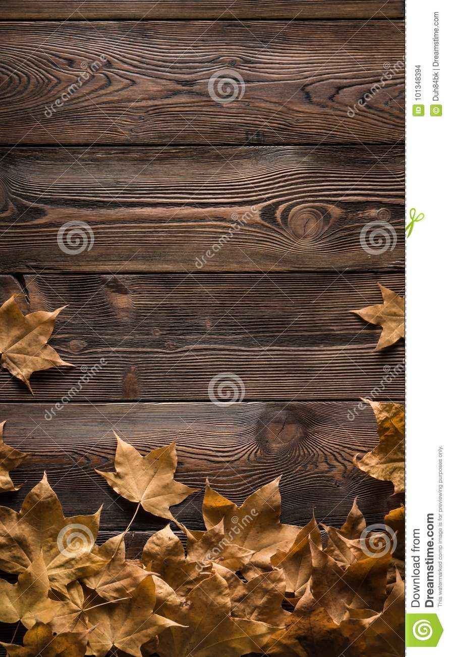 Download Frame Of Autumn Leaves On Wooden Boards Stock Photo - Image of leaf, effect: 101348394