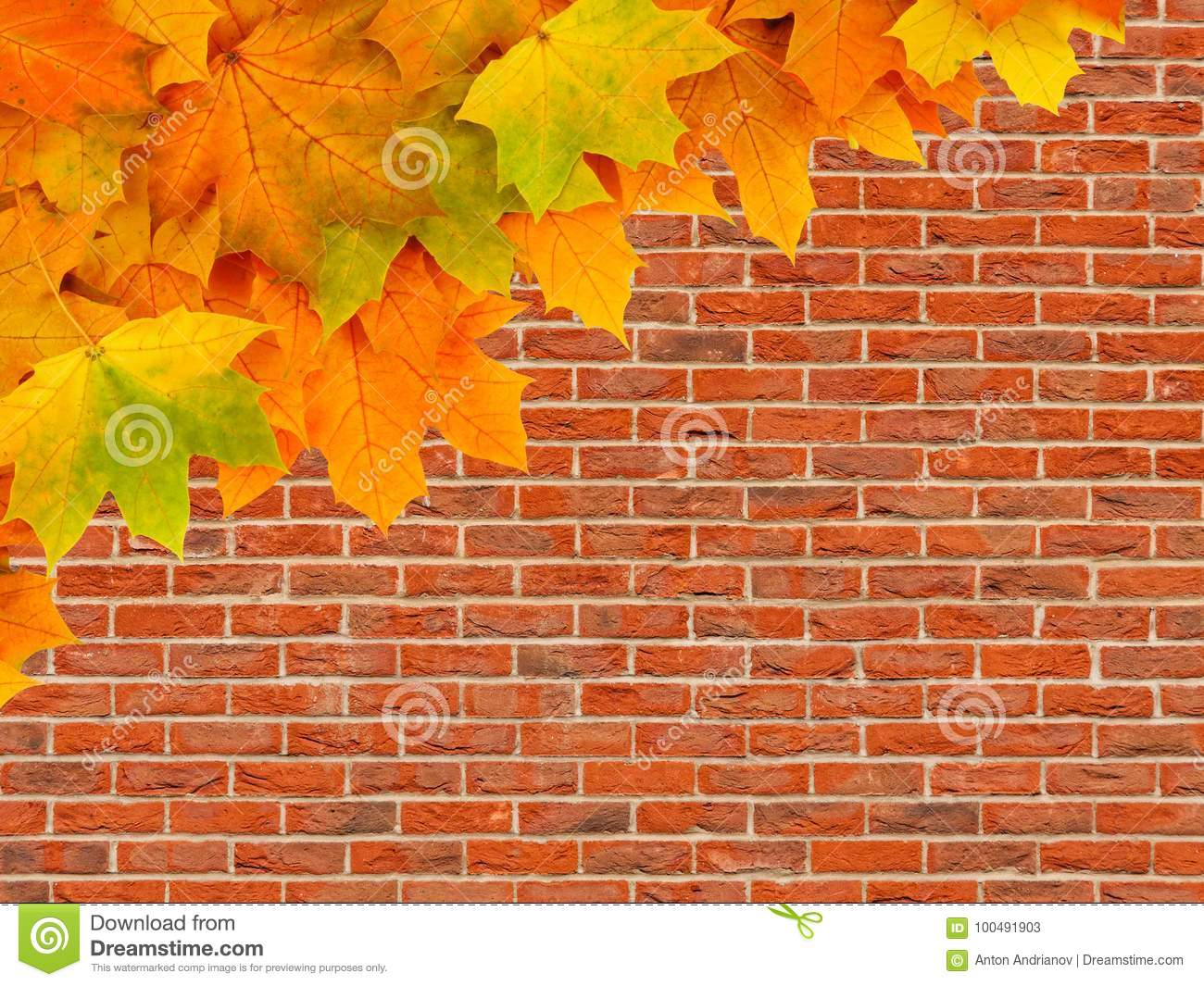 Autumn Background Maple Leaves On Brick Wall Stock Image Of Fall