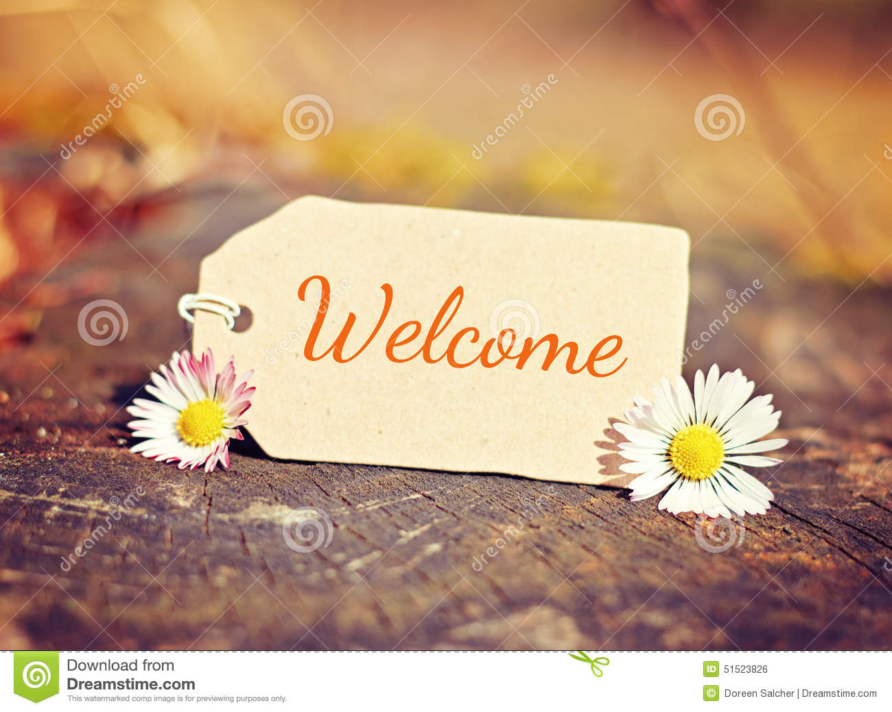 background-welcome-outdoor-greeting-card-text-51523826.jpg