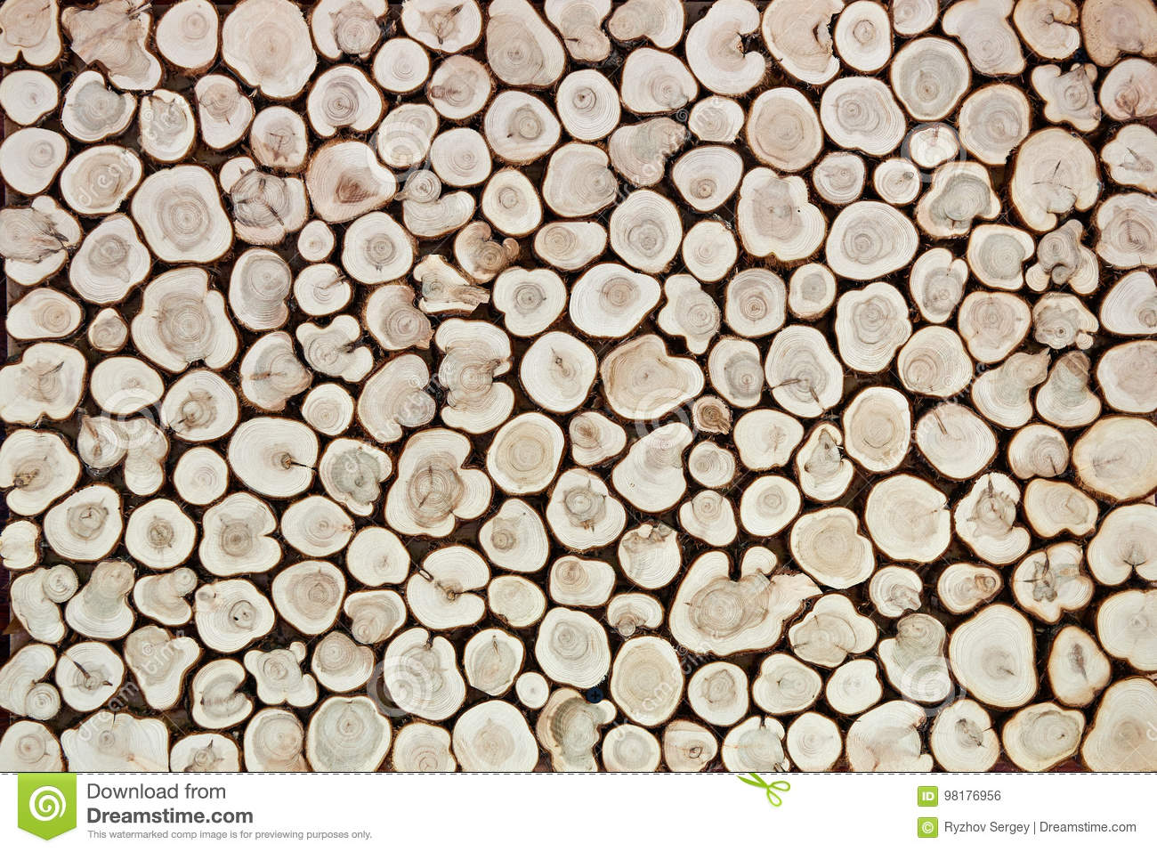 Background of wooden slices