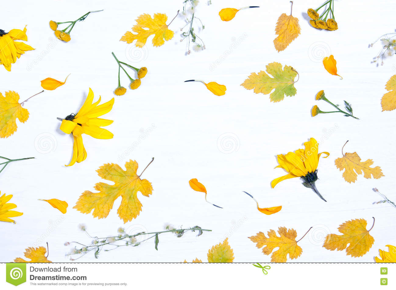 Background Of Yellow Flowers And Leaves Stock Image Image Of