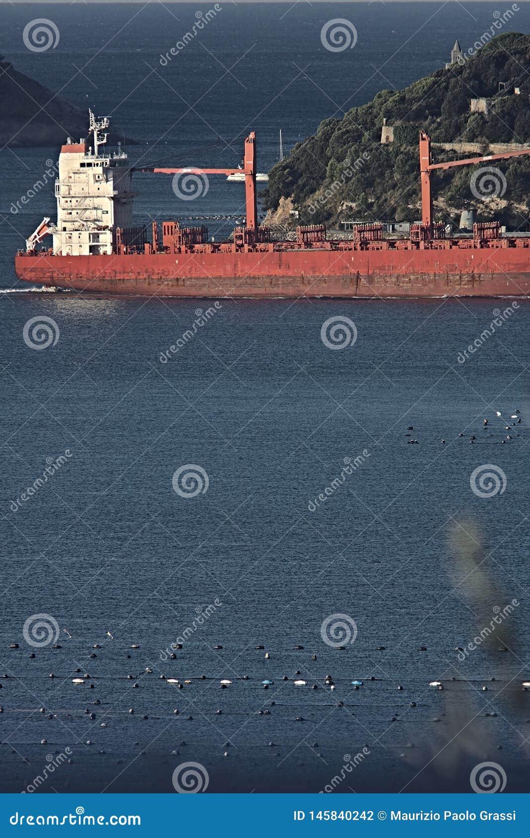 A cargo ship in the Gulf of La Spezia, Liguria