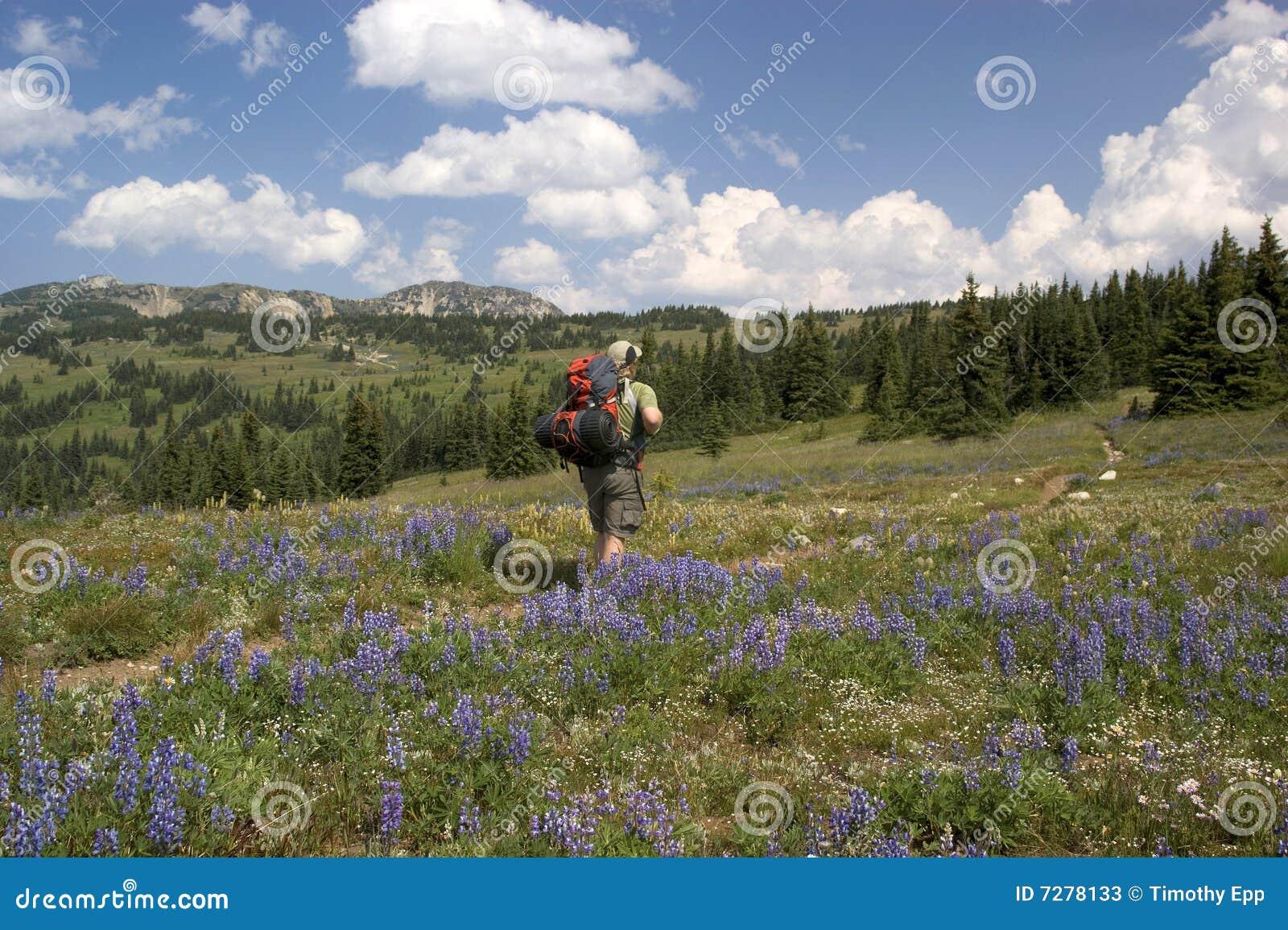 Backpacker alpestre