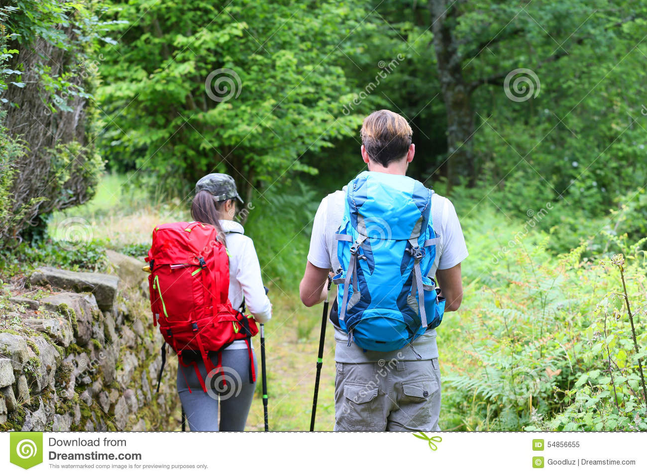 Backpackers hikers walking in forest