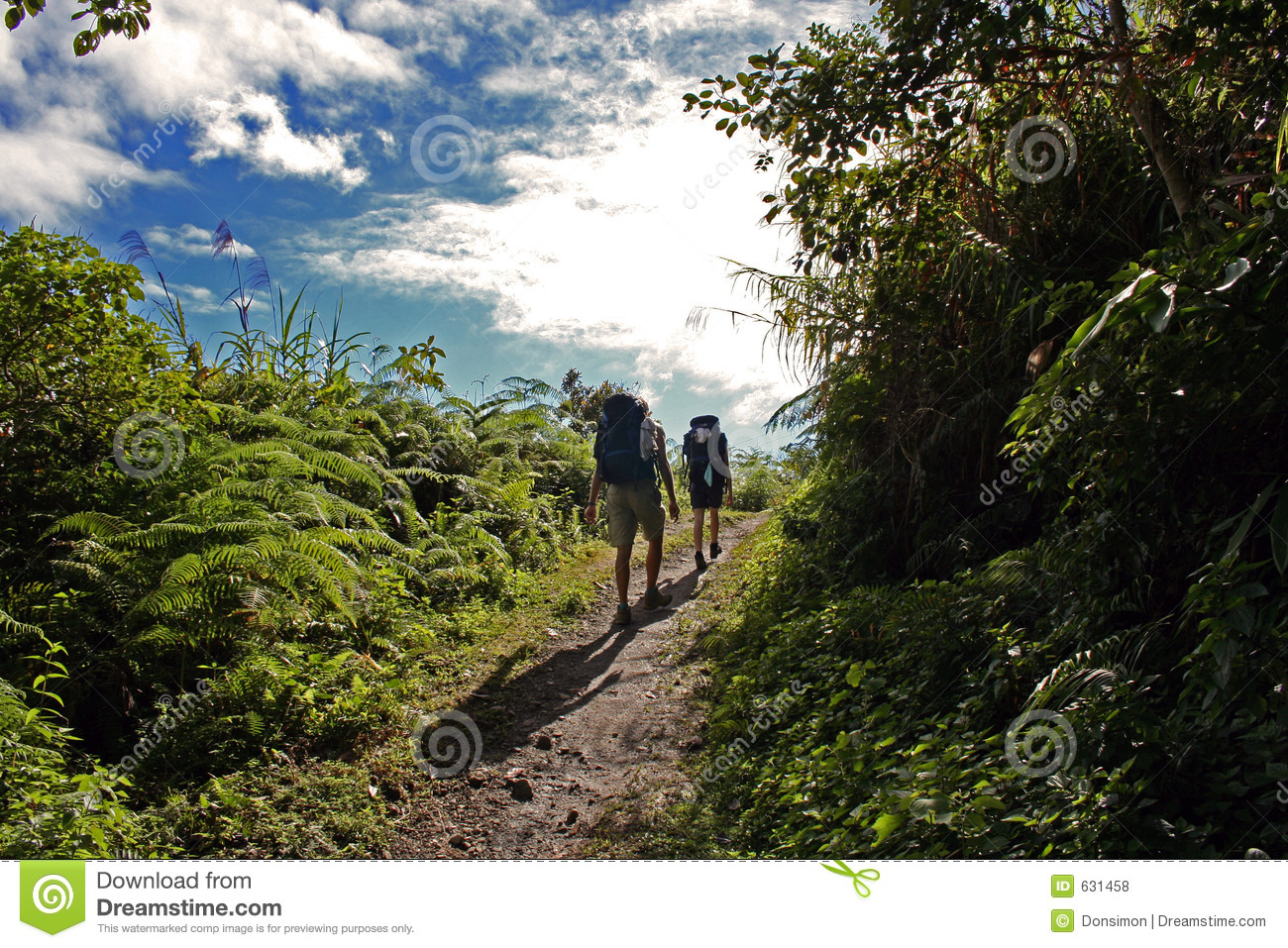 Backpackers hiking uphill mountain trail