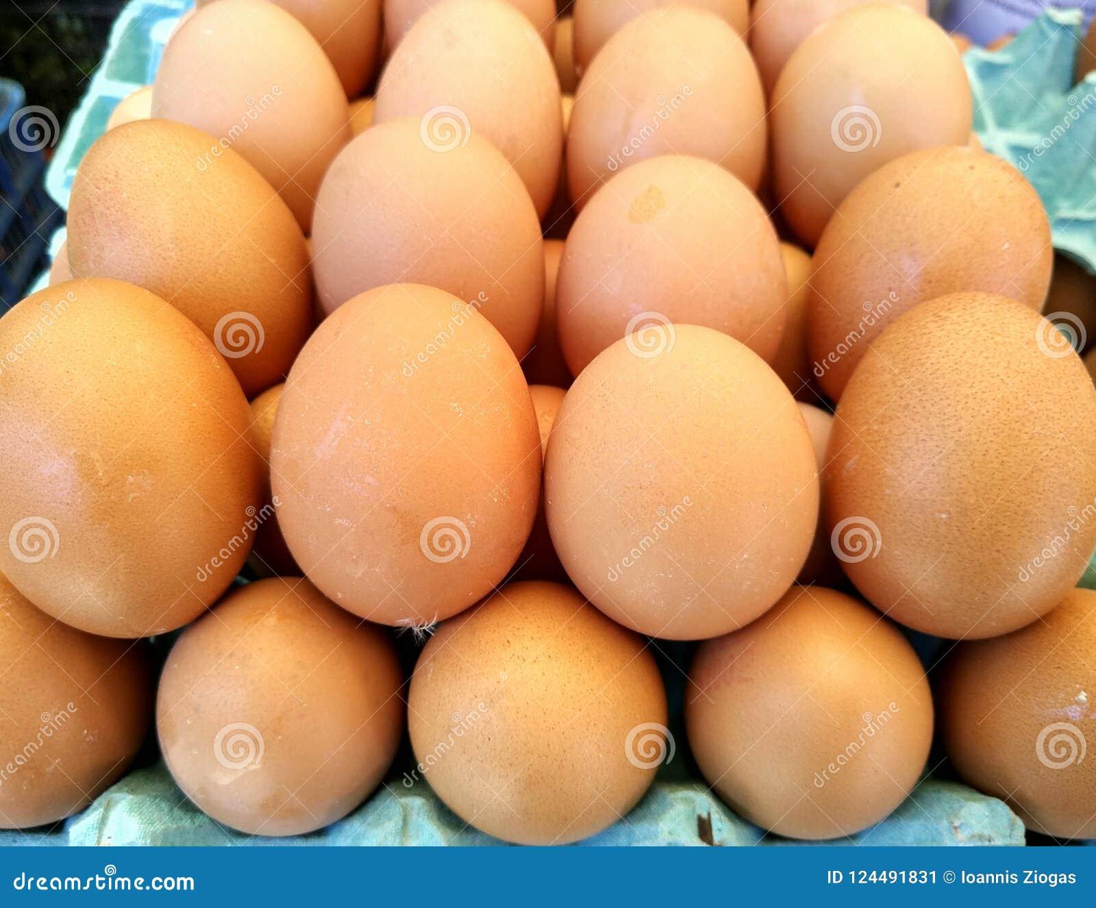 Backround dei lotti delle uova