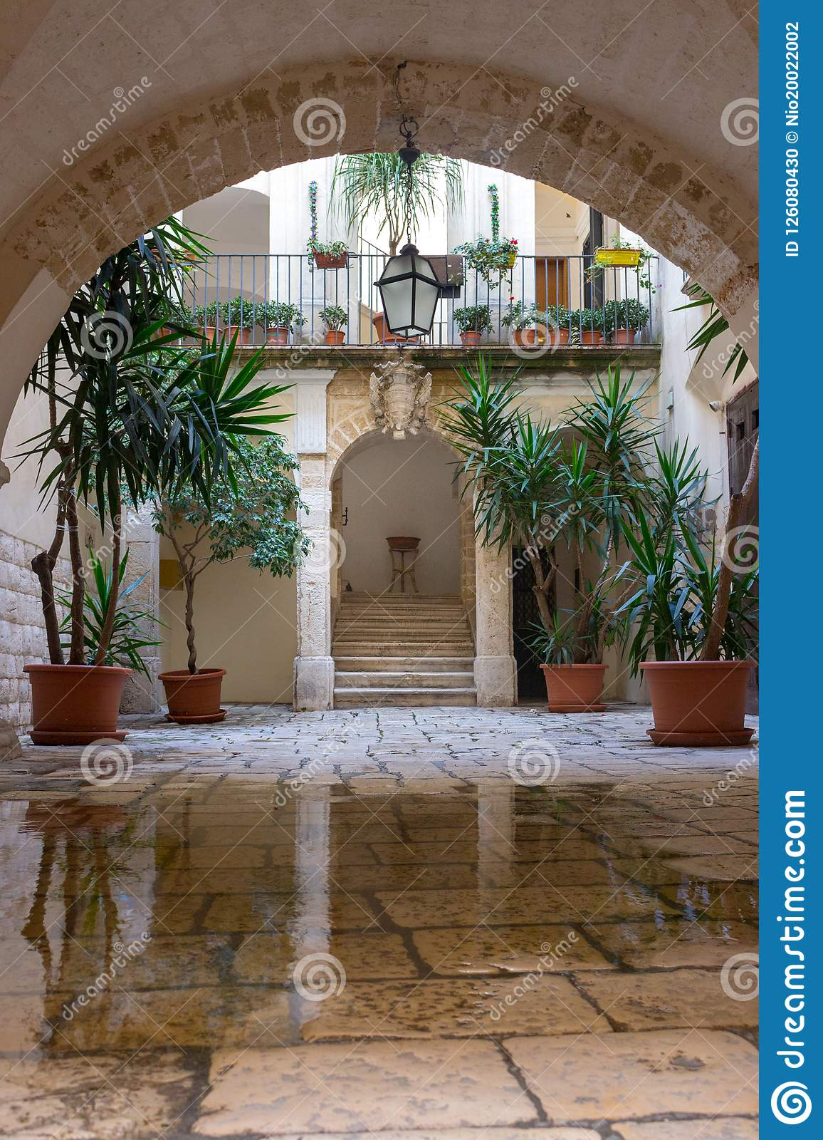 Download Backyard With Arch, Plants In Pots, Stairs, Puddle And Lantern.  Patio
