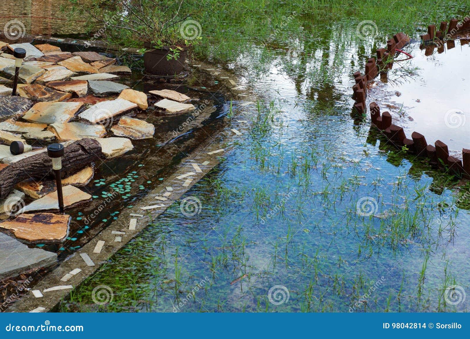 Backyard Flooding In Florida Stock Photo - Image of water ...