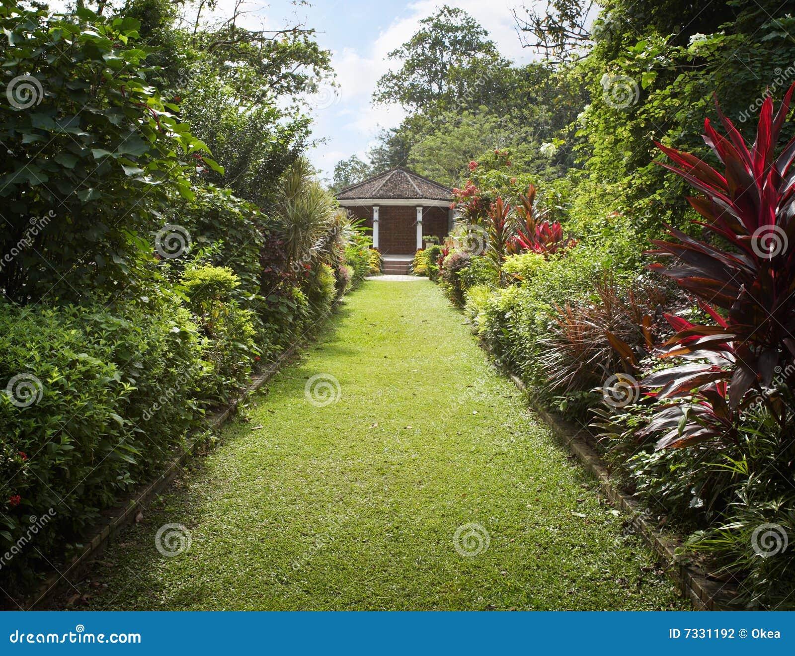 Backyard Garden Stock Photo. Image Of Path, Garden, Nature