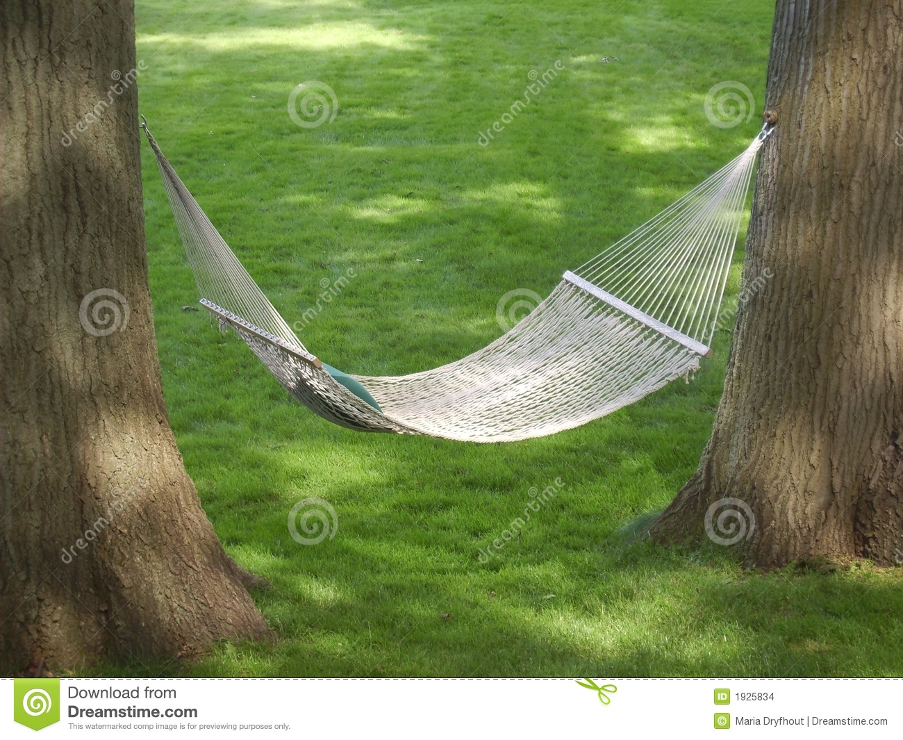 Backyard Hammock Stock Images Image 1925834