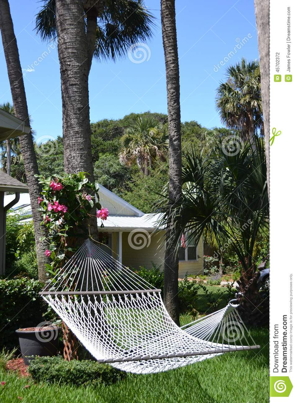 backyard hammock in tropics stock photo image 45702372