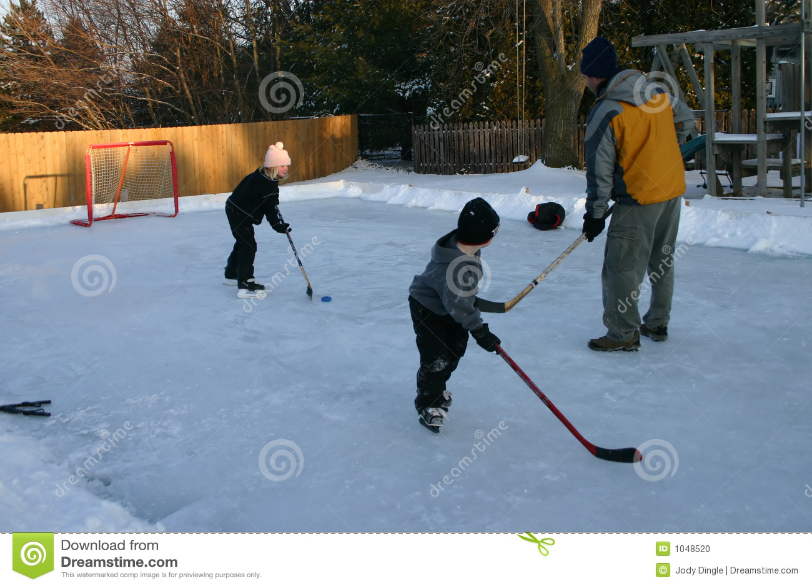 backyard hockey stock photo image 1048520