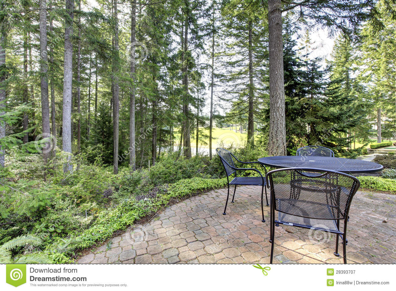 backyard with pine trees and metal table with chairs royalty free
