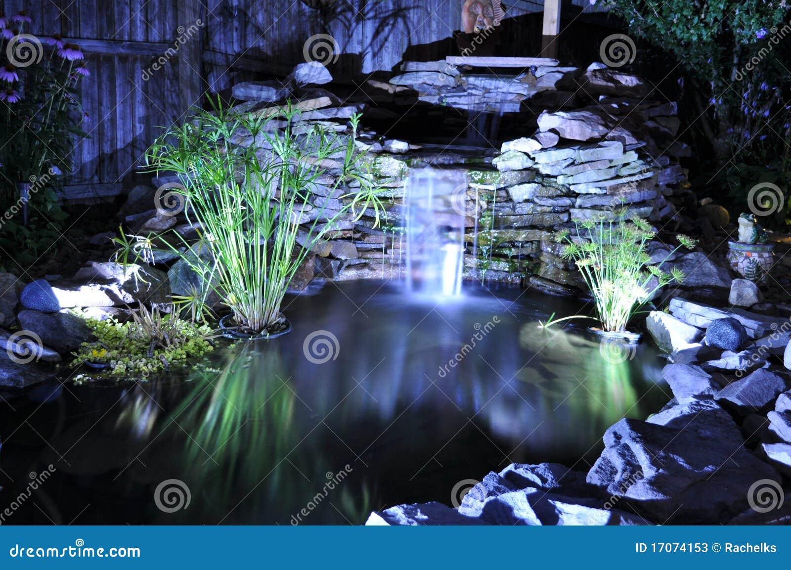 Backyard Sounds At Night : Backyard pond lit up by lights at night