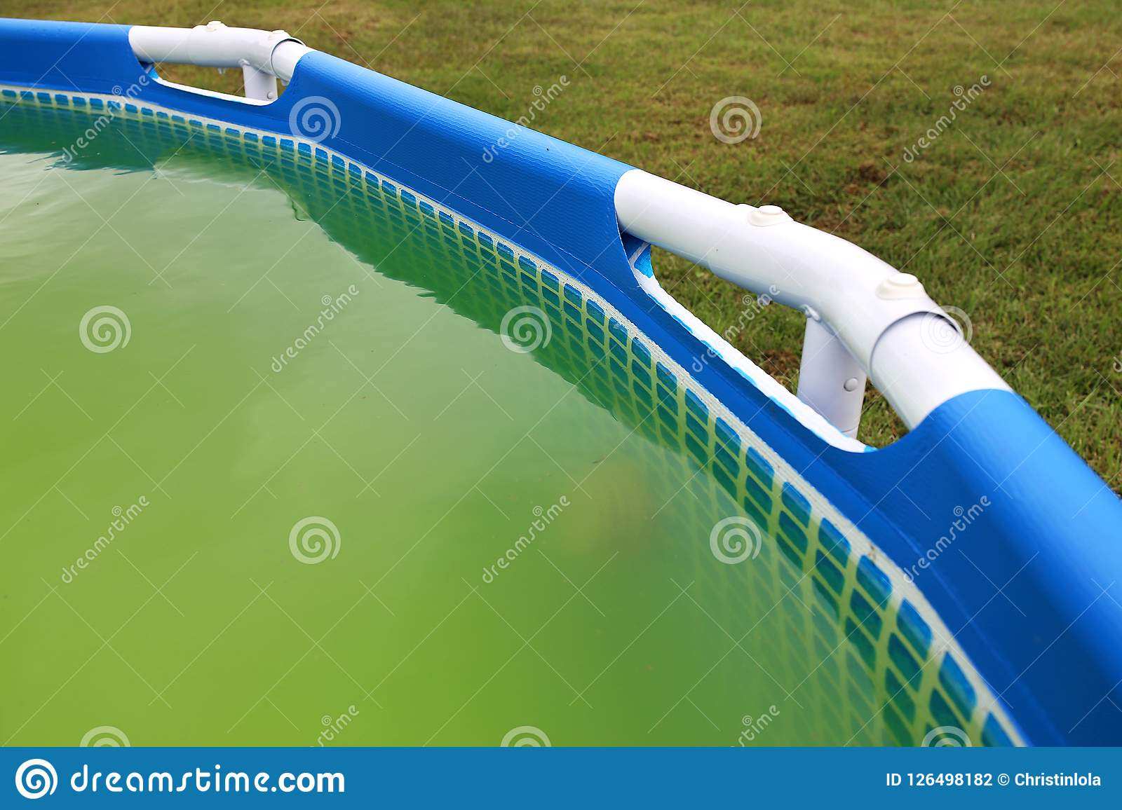 Super Green Water With Algea In Backyard Swimming Pool Stock Photo ...