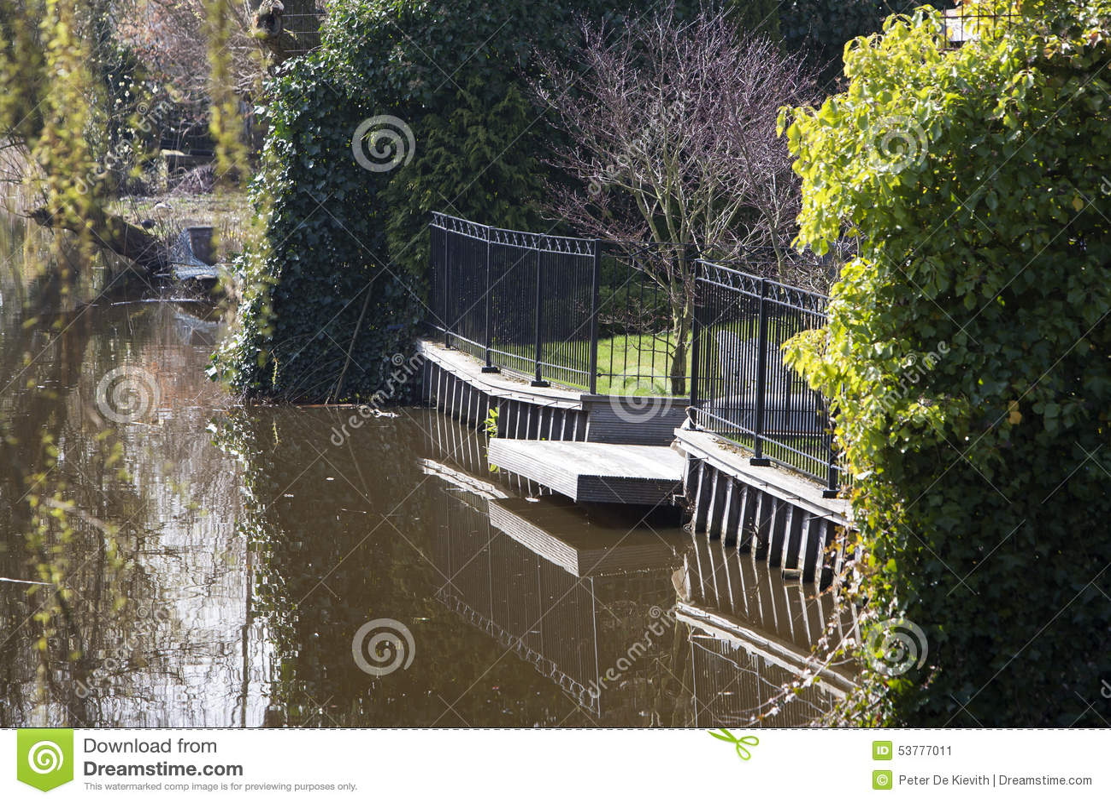 backyard water garden stock photo image 53777011