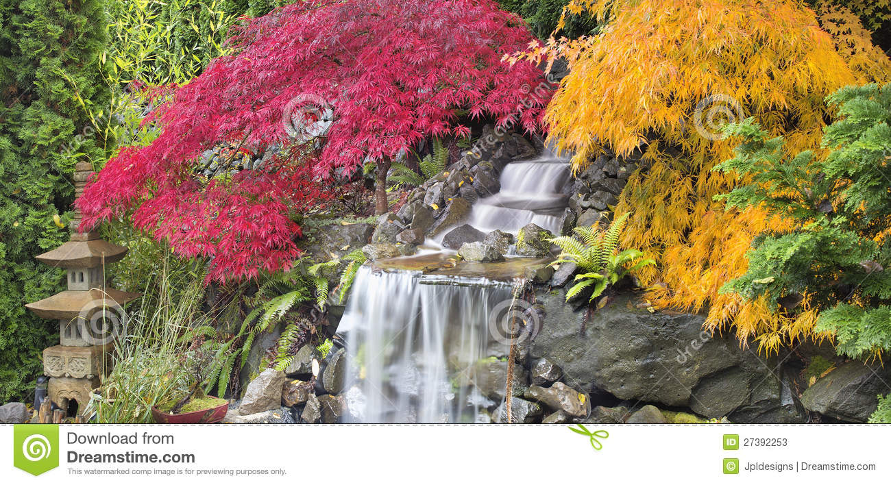 Backyard Waterfall with Japanese Maple Trees Fall