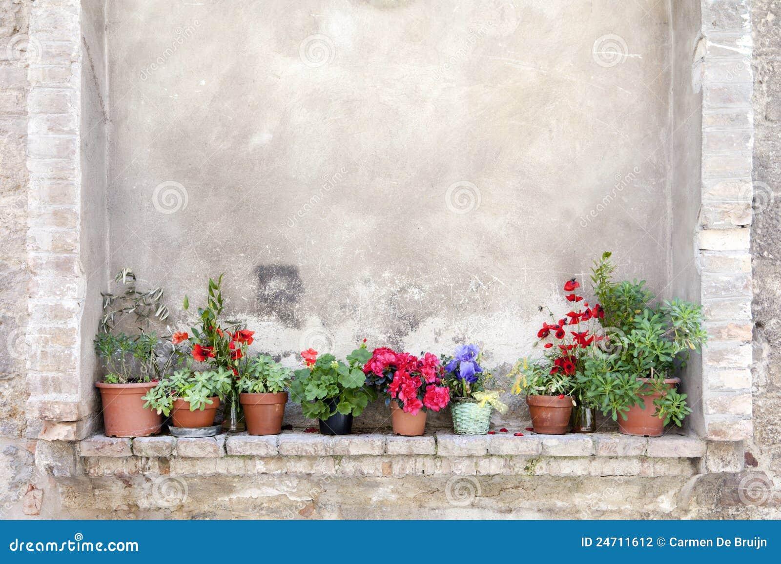 bacs de fleur sur un mur antique en toscane photo stock image 24711612. Black Bedroom Furniture Sets. Home Design Ideas