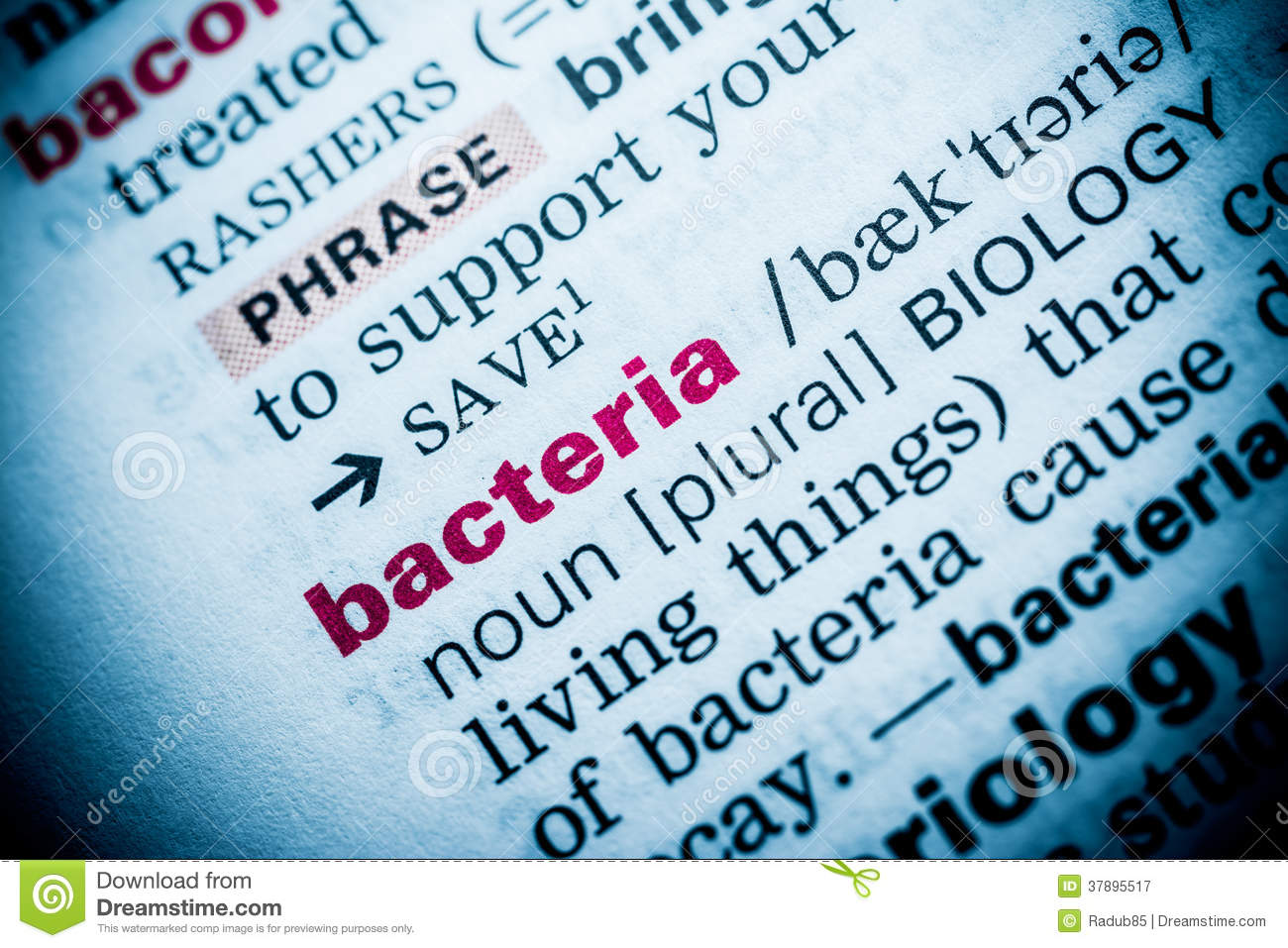 bacteria word definition stock image. image of conceptual - 37895517