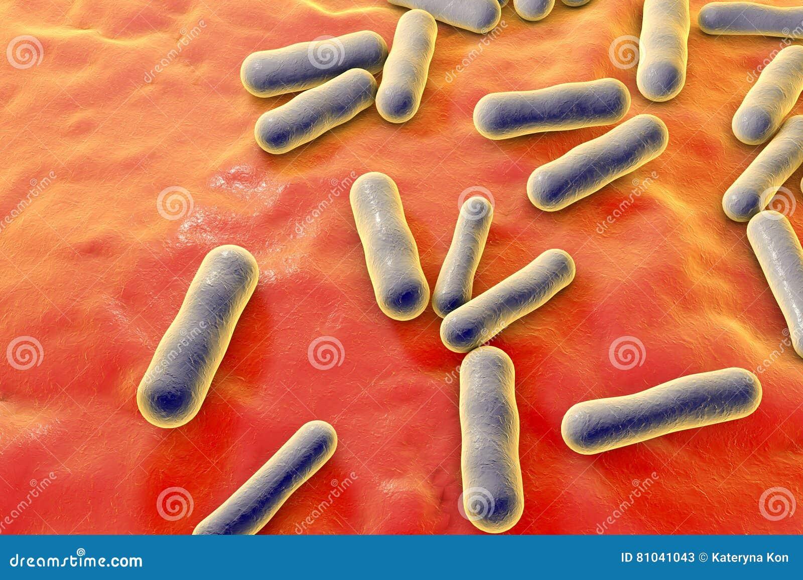 Bacterias que causan acné