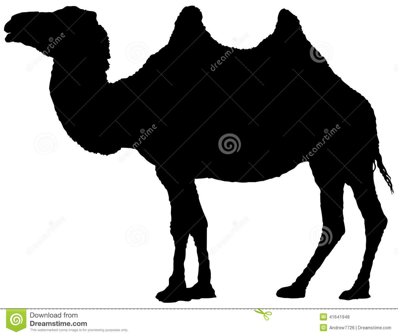 bactrian camel silhouette stock illustration image 41641948