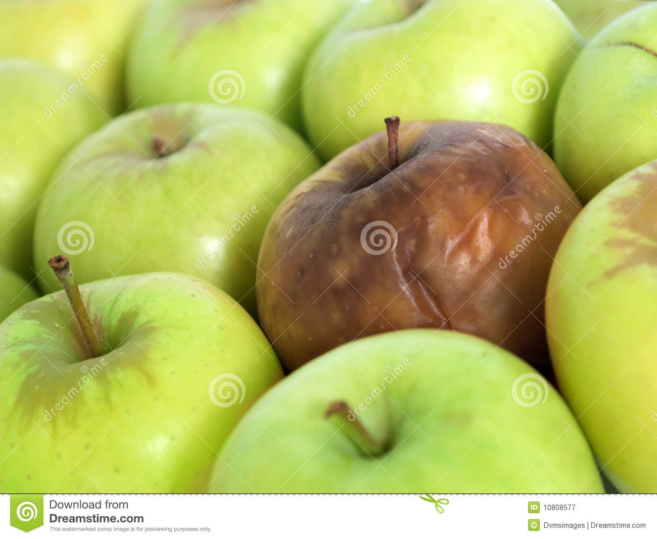 Bad Apple In The Bunch Royalty Free Stock Photography ...