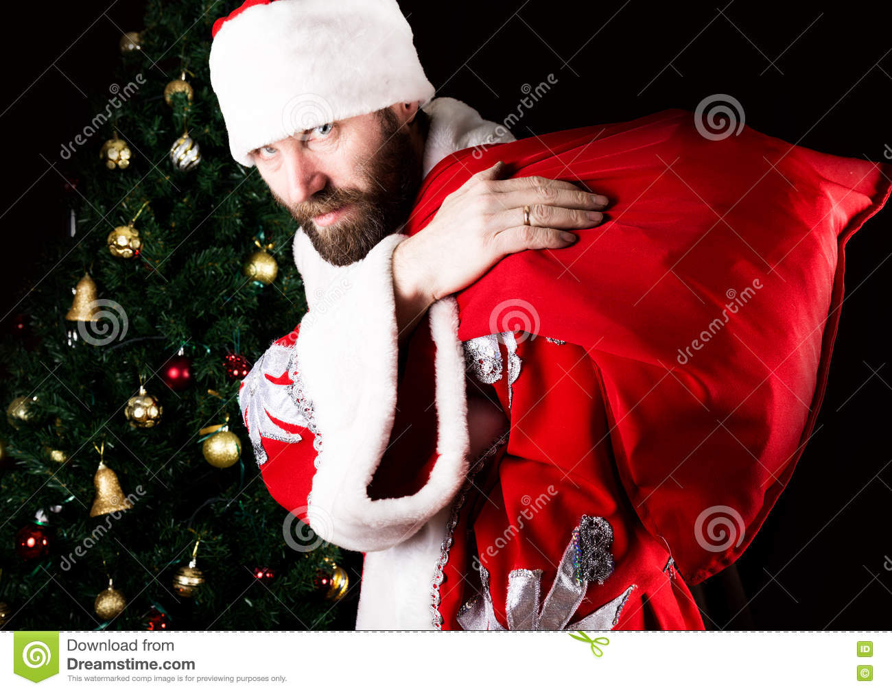 Bad brutal Santa Claus carries a bag and smiling spitefully, on the background of Christmas tree