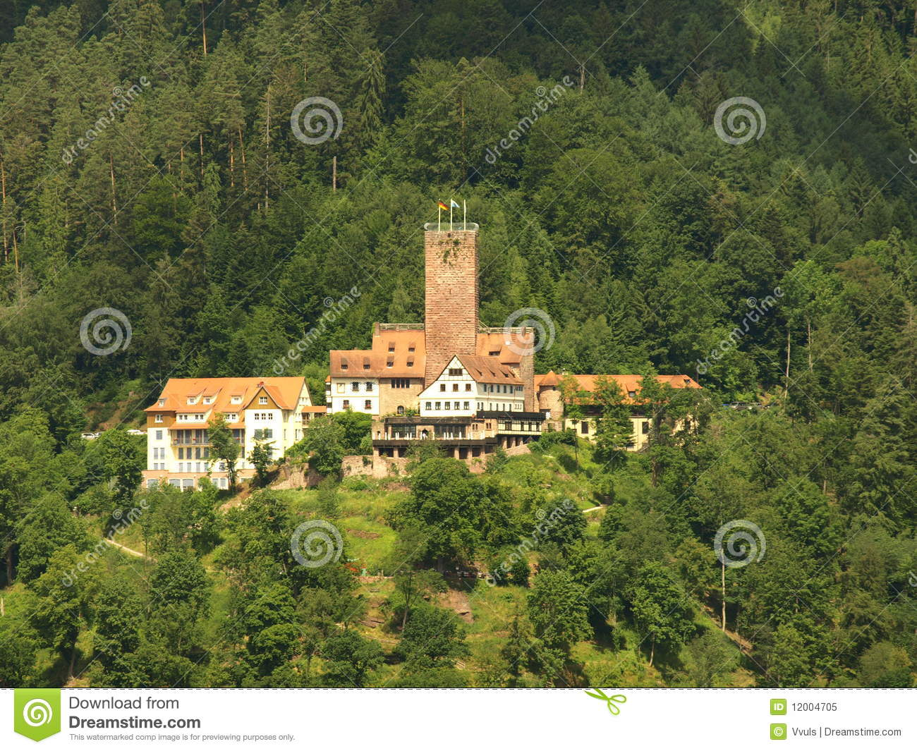 Bad Liebenzell castle stock image. Image of spruce, castle