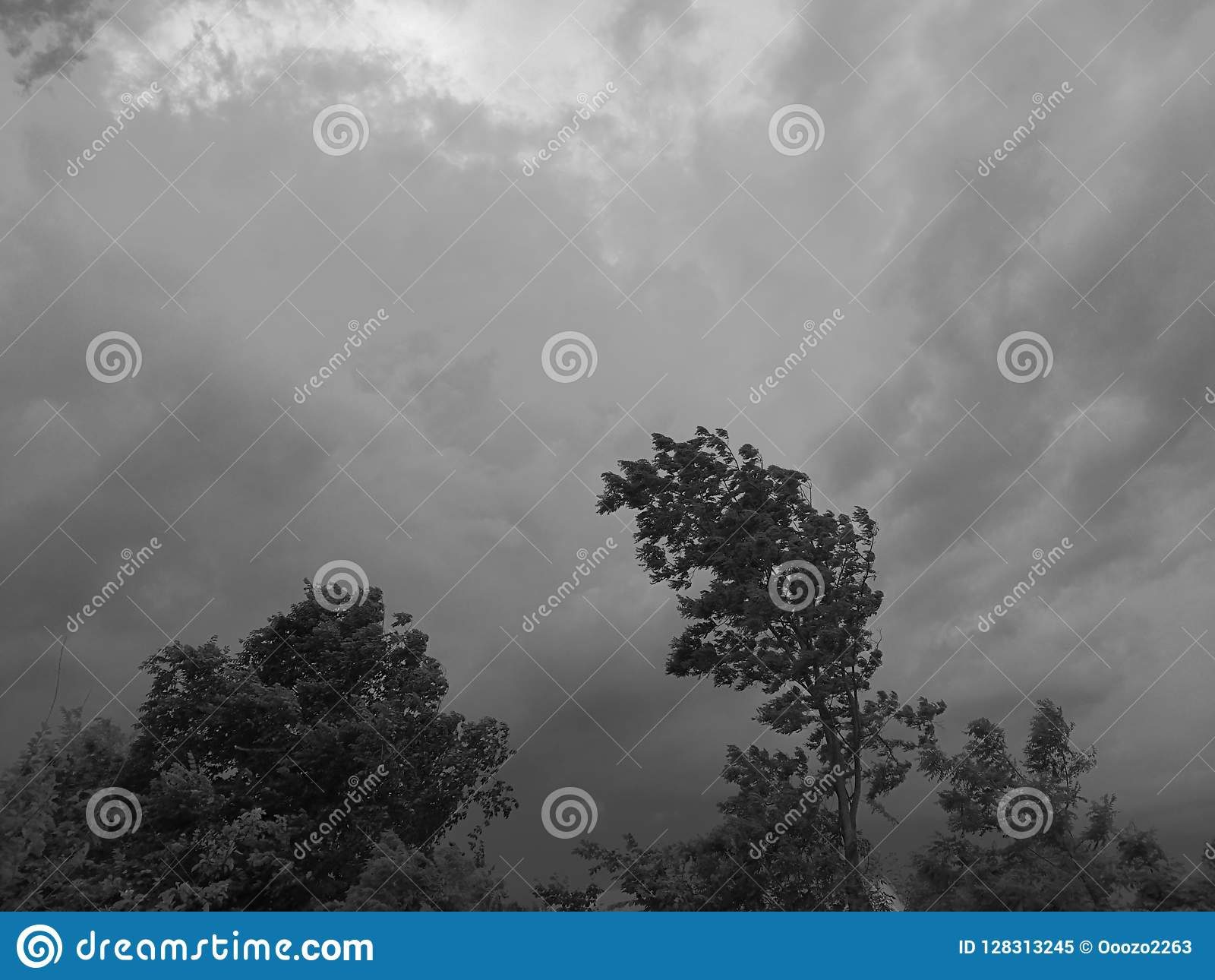 Monochrome sky over Russia stock image. Image of emotions ...