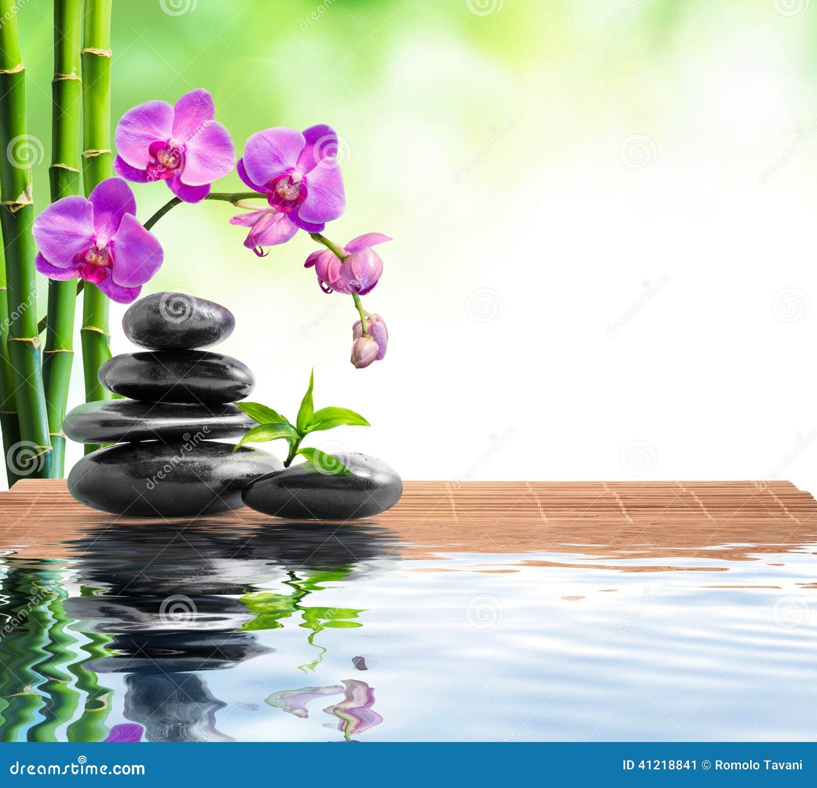 Badekurorthintergrund Mit Bambus Orchideen Und Wasser Stockbild