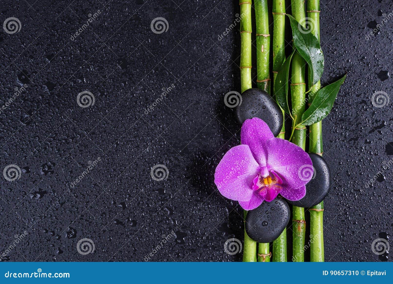 Wallpaper bambus und steine  Wallpaper Bambus Und Steine. Ipad Wallpaper Schner Wald In ...