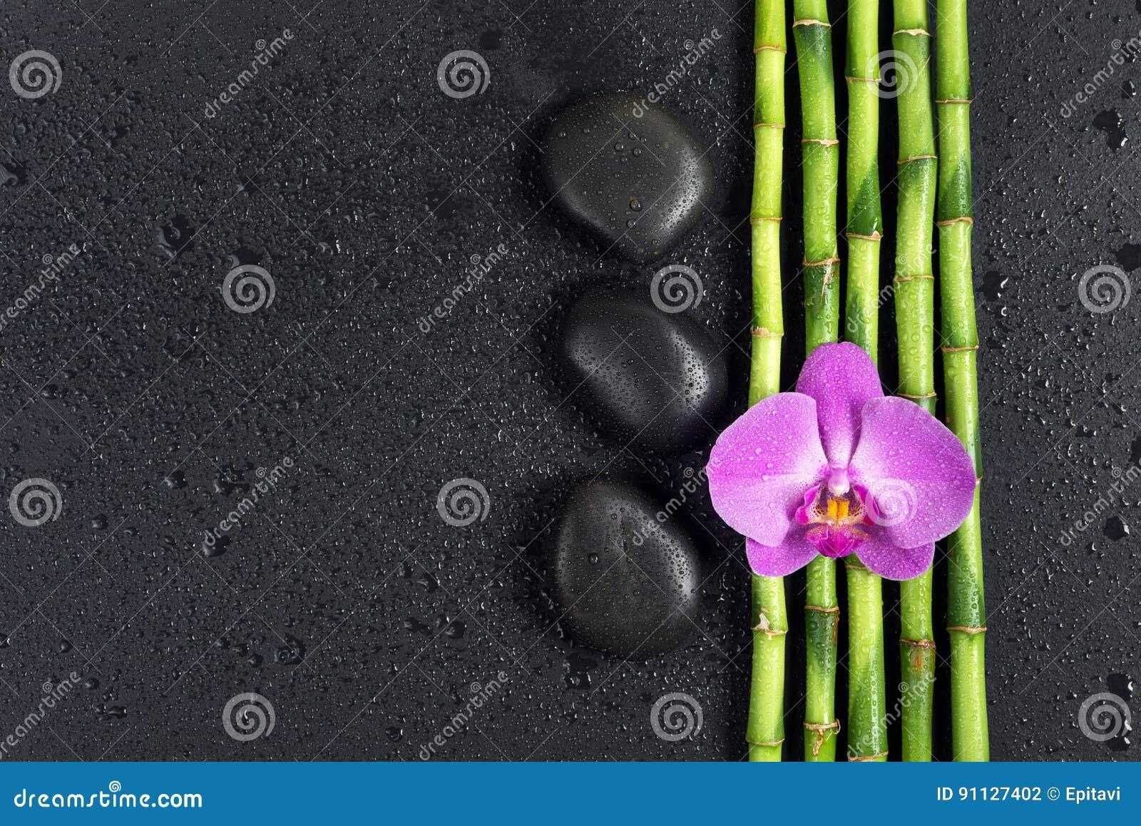 Badekurortkonzept Mit Zensteinen Orchideenblume Und Bambus