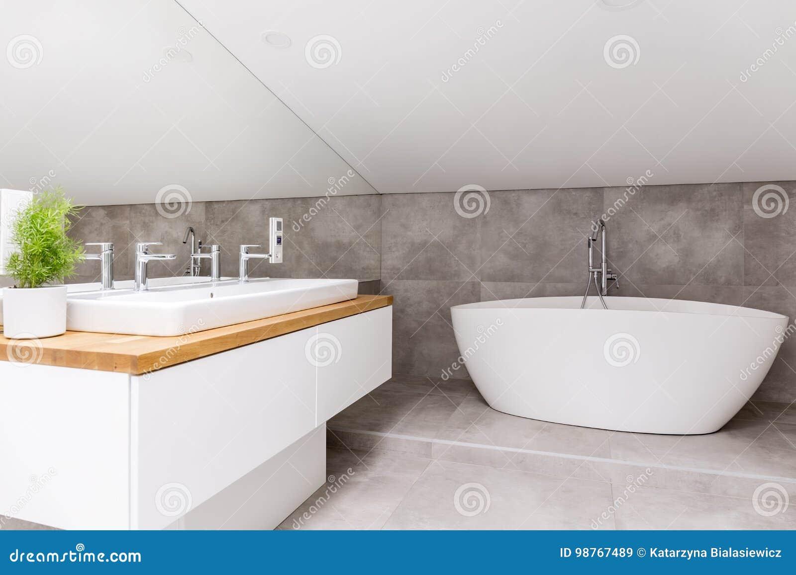 Badkamers met gevormde badkuip stock afbeelding afbeelding