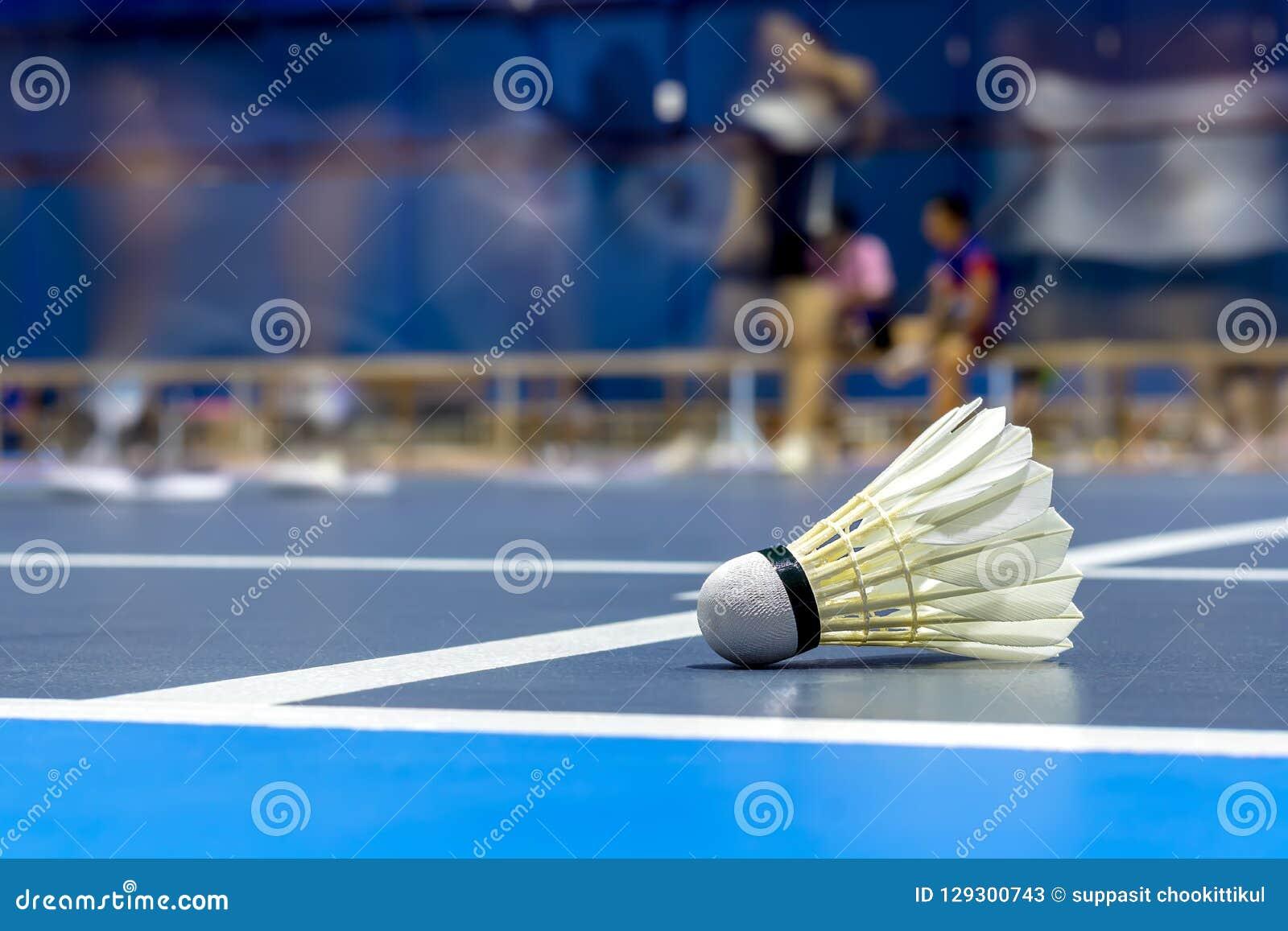 Badminton do galo da canela na corte azul