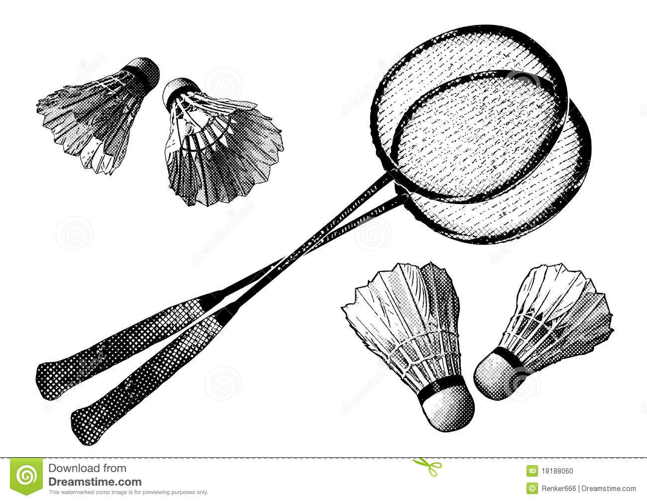 Badminton Equipment Stock Vector Illustration Of Exercise