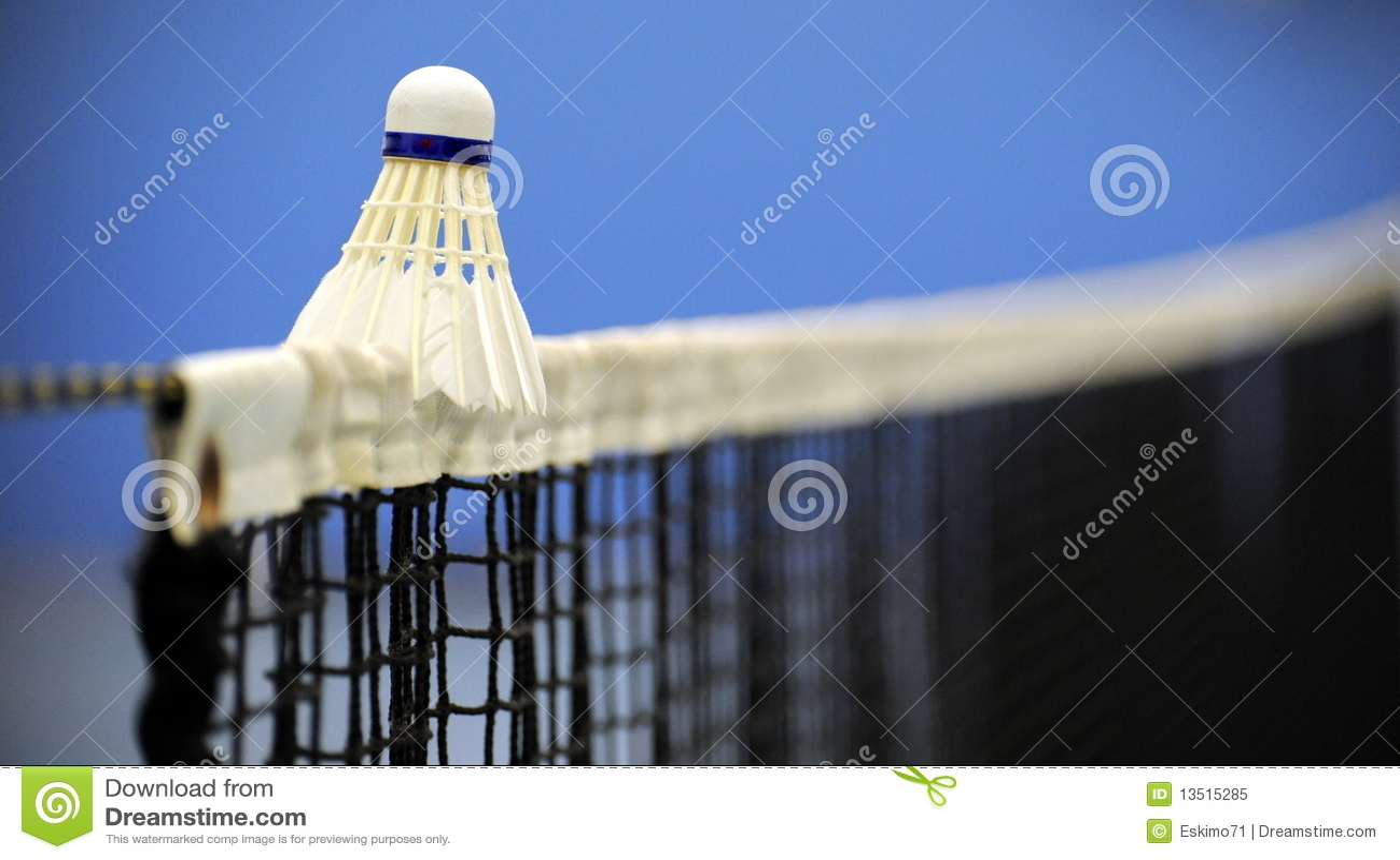 Badminton on net