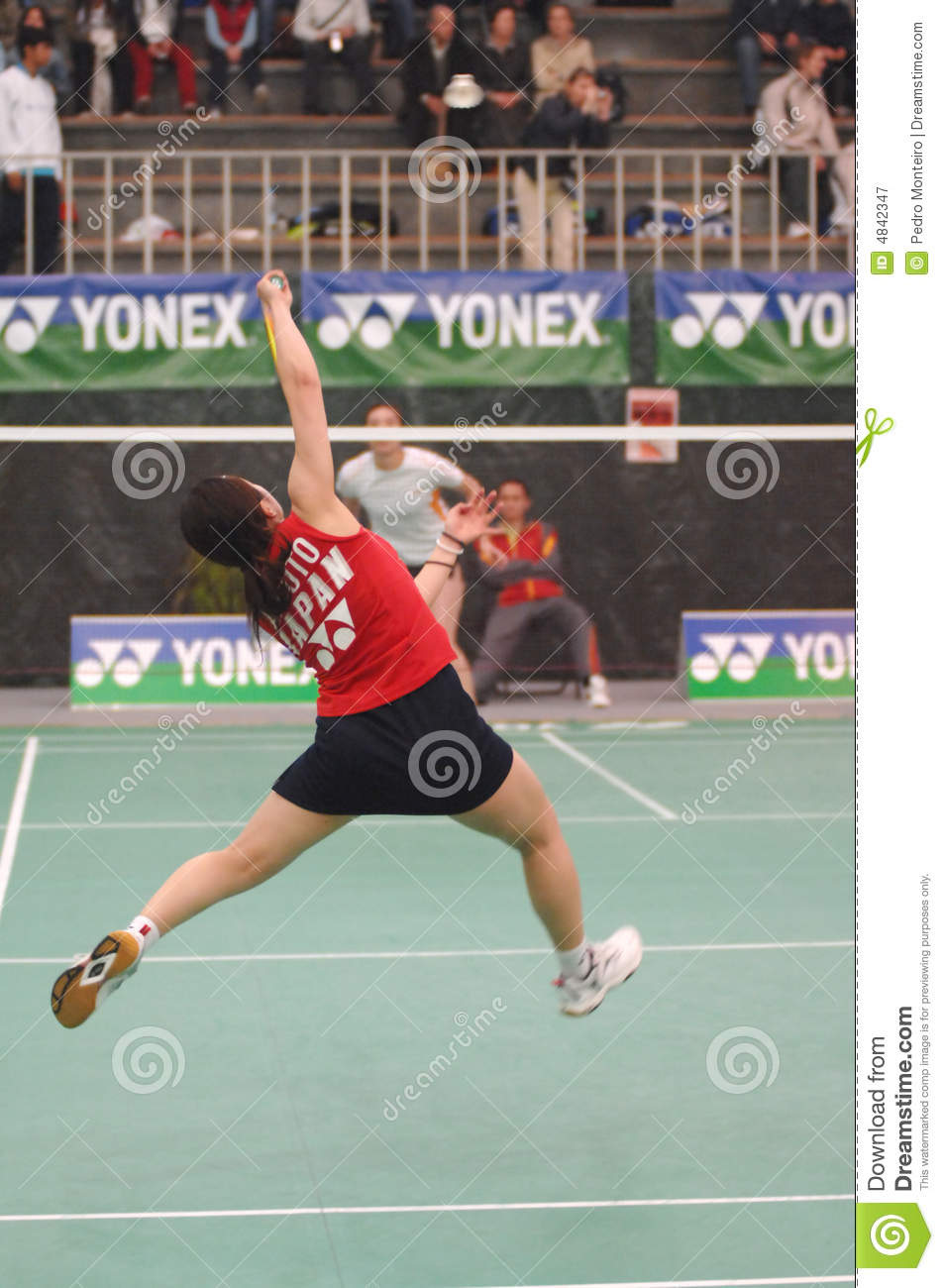 International badminton players