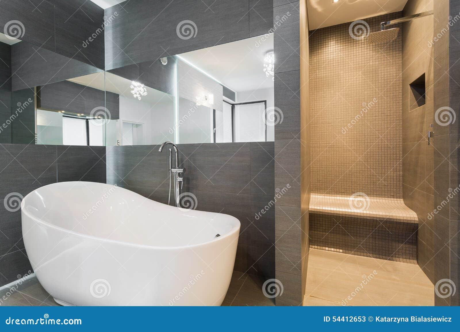 Badrum med badkaret och duschen arkivfoto   bild: 54412653