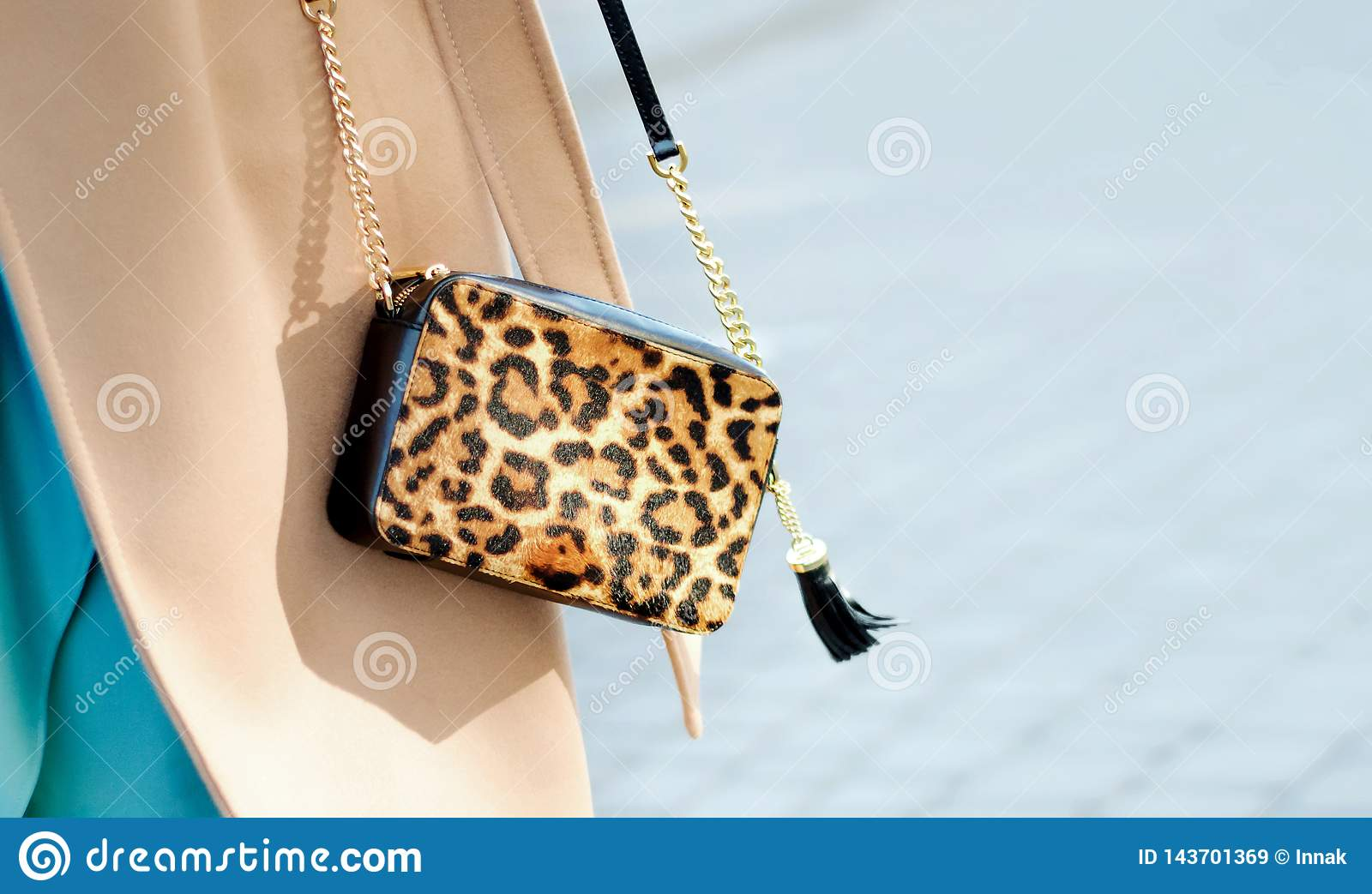 Bag in leopard print close-up. Small leather handbag in female hands. Woman walking in the city.